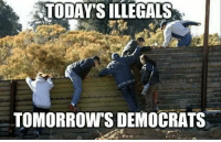 Memes, 🤖, and  Democrats: TODAY'S ILLEGALS  TOMORROW'S DEMOCRATS