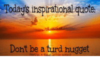 Inspirational: Todays inspirational quotes  Don't be a turd hugge