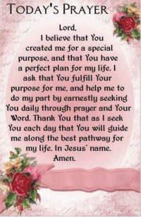 Jesus, Life, and Memes: TODAY'S PRAYER  Lord,  believe that You  created me for a special  purpose, and that You have  a perfect plan for my life. l  ask that You fulfill Your  purpose for me, and help me to  do my part by earnestly seeking  You daily through prayer and Your  Word. Thank You that as I seek  You each day that You will guide  me along the best pathway for  my life. In Jesus' name.  Amen. Amen