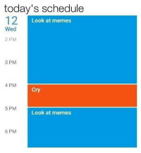 Memes 6: today's schedule  12  Look at memes  Wed  2 PM  3 PM  4 PM  Cry  5 PM  Look at memes  6 PM