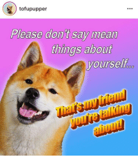 impertant: tofupupper  Please don t say mean  things about  yourself  friel  ho impertant