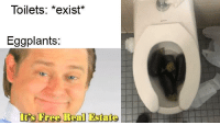Its Free Real Estate: Toilets: *exist*  Eggplants:  Its Free RealEstate
