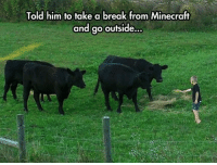 60 Funny Animals Memes For You If You Desperately Need A Laugh: Told him to take a break from Minecraft  and go outside... 60 Funny Animals Memes For You If You Desperately Need A Laugh