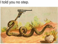 told you no step Step on snek