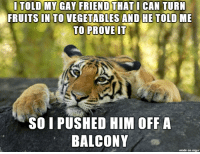 Funny, Imgur, and Kids: TOLDlYGAY FRIE  NOTHATI  CAN  TURN  FRUITS IN TO VEGETABLES AND HE TOLD ME  TO PROVEIT  SO L PUSHED HIM OFF A  BALCONY  made on imur Imgur Post - Imgur
