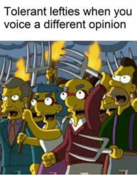 Memes, Voice, and 🤖: Tolerant lefties when you  voice a different opinion Feminists included - Loverbot