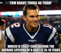 brady: TOM BRADY TURNS 40 TODAY  NFL MEMES  WHICH IS CRAZY CONSIDERING THE  AVERAGE LIFESPAN OF A GOAT IS 15-18 YEARS