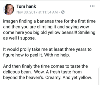 Tom Hank: Tom hank  Nov 30, 2017 at 11:54 AM  imagen finding a bananas tree for the first time  and then you are climjing it and saying wow  come here you big old yellow beans!!! Smileing  as well i supose  t would prolly take me at leaat three years to  figure how to peel it. With no help  And then finaly the time comes to taste the  delicous bean, Wow. A fresh taste fromm  beyond the heaven's. Creamy. And yet yellow