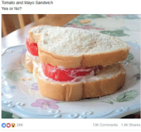 The Ultimate Sandwich Recipe: Tomato and Mayo Sandwich  Yes or No?  13K Comments 1.4K Shares The Ultimate Sandwich Recipe