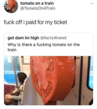 Fucking, Memes, and Fuck: tomato on a train  @TomatoOnATrain  fuck off i paid for my ticket  got dam im high @facts4tweet  Why is there a fucking tomato on the  train