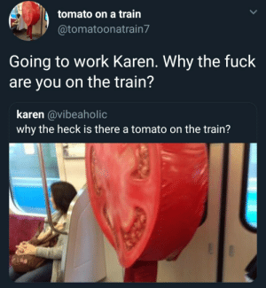 Dank, Memes, and Target: tomato on a train  @tomatoonatrain7  Going to work Karen. Why the fuck  are you on the train'?  karen @vibeaholic  why the heck is there a tomato on the train? Meirl by SkireGD MORE MEMES
