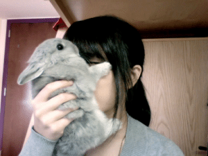 Anaconda, Tumblr, and Animal: tomatomagica: sempermemor:  buttpilgrim:  apply bun directly to the forehead  As an animal science major I can 100% certify that this is the correct usage of a bun.    self-care is putting the softest bun on your face