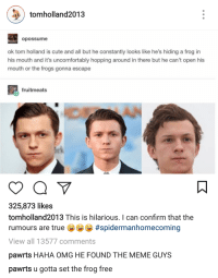 Cute, Meme, and Omg: tomholland2013  opossume  ok tom holland is cute and all but he constantly looks like he's hiding a frog in  his mouth and it's uncomfortably hopping around in there but he can't open his  mouth or the frogs gonna escape  fruitmeats  325,873 likes  tomholland2013 This is hilarious. I can confirm that the  rumours are true #spidermanhomecoming  View all 13577 comments  pawrts HAHA OMG HE FOUND THE MEME GUYS  pawrts u gotta set the frog free <p>Ribbit.</p>