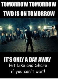 Memes, News, and The Walking Dead: TOMORROW TOMORROW  TWD IS ON TOMORROW  ITS ONLY ADAY AWAY  Hit Like and Share  if you can't wait! #TheWalkingDead fans, an actual response today would be awesome of you guys. :) (y)  http://www.egvoproductions.com/news-blog/the-walking-dead-season-7-premiere-the-day-will-come-when-you-wont-be-on-amc-10-23-2016