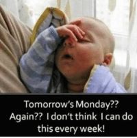 Funny,  Over It, and  Week: Tomorrow's Monday??  Again?? I don't think I can do  this every week! I'm over it already😩 saynotomondays