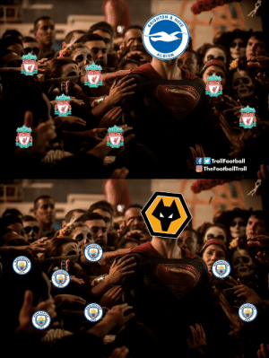 Football, Memes, and Premier League: TON&  ALBION  IVERPOO  LIVER  LIVER  IVERPOOL  Troll Football  TheFootballTroll On the final matchday of Premier League 2018-19 season https://t.co/L3Ow5YlCYO