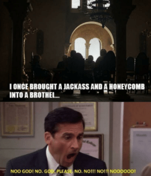 God, Shit, and Got: TONCE BROUGHT A JACKASS AND A HONEYCOMB  INTO A BROTHEL...  NOO GOD! NO. GOD PLEASE, NO. NO!!! NO!!! NOOOOO0! My reaction when this shit recycled joke was the last scene of GoT, basically sums up the effort that went into season 8