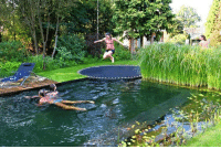 Run, Target, and Tumblr: toni-tan:  taylorthelatteboy:   Just a pool, disguised as a pond, with a trampoline instead of a diving board  Holy fuck! I wrote a paper about these kinds of pools several years ago for a class when they were just prototypes. These pools have a natural filtration system that run based on the plants that are in the pool that give the water nutrients that allow it to not only be crystal clear, but you are also able to drink the water because it becomes so clean. And the best part is that once the initial filtration system is installed and calibrated, it maintains itself and eliminates the need for chlorine or constant maintenance like salt water pools.   I want one