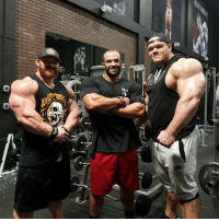 Tonight myself and Big Country @dallasmccarver was joined by our Costa Rican friend @fello_cambronero who's a week out from the Chicago pro 212lb. Alex Now working with @neil_yoda_hill1 has made some crazy changes in such a short time of working together. A different guy heading to Ctown after his last showing at the Ny Pro. Another Great session lads. Follow the InstaStories. DragonsLair ProjectFlex FlexLewis alexcambronero DallasMcCarver ShoulderDay: Tonight myself and Big Country @dallasmccarver was joined by our Costa Rican friend @fello_cambronero who's a week out from the Chicago pro 212lb. Alex Now working with @neil_yoda_hill1 has made some crazy changes in such a short time of working together. A different guy heading to Ctown after his last showing at the Ny Pro. Another Great session lads. Follow the InstaStories. DragonsLair ProjectFlex FlexLewis alexcambronero DallasMcCarver ShoulderDay