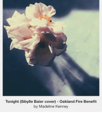 Dancing, Memes, and Waves: Tonight (Sibylle Baier cover) Oakland Fire Benefit  by Madeline Kenney time for something personal, sentimental, and really important. this song is getting me fucked up but i have to share it it's so good. it's a cover by Madeline Kenney and it means a lot to me for so many reasons. when i first moved to the bay i barely knew anyone and my coworkers at the coffee shop i worked at were consistently the people that made me feel at home, invited me out for drinks and to shows, etc. it was weird to have coworkers i actually DID want to see outside of work, but i dug it. Madeline and I (as well as many other bay area pals) worked with Edmond Lapine (@slamdance_cosmopolis) and this song honors him. in the brief time that i knew him, wether it was picking out records at work, eating toast outside, waving hi at queer dance events or just taking the time to ask me how i was doing when he knew i had had a tough day, it is weird to reflect on him and feel so far removed. wether you knew him well or just liked him from afar i feel like listening to this song can make you feel connected to the person i knew him to be. purchasing it to benefit victims and families affected by the oakland fire is a small step but it's only a dollar and you get a really good song to cry to on the side of the road. thank you for this recording it is really moving. LINK TO PURCHASE SONG (or just listen) IN BIO