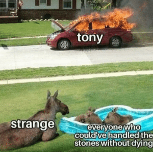 Literally: tony  strange  everyone who  could ve handled the  stones without dying Literally