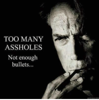 ;): TOO MANY  ASSHOLES  Not enough  bullets ;)