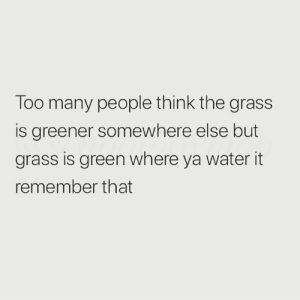 Too real🙌💯: Too many people think the grass  is greener somewhere else but  grass is green where ya water it  remember that Too real🙌💯