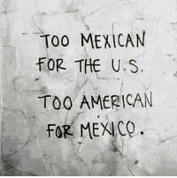 Mood moreso lately than ever before LaLuchaSigue - you are not alone: ToO MEXICAN  FOR THE U S  TOO AMERICAN  FOR MEXICO Mood moreso lately than ever before LaLuchaSigue - you are not alone