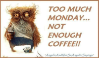 TOO MUCH  MONDAY  NOT  ENOUGH  COFFEE!!  AngelicAnd NotSo Angelis,Sayings. Good morning!