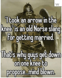 Thoughts? skyrim marriage arrowtotheknee elderscrolls tes theelderscrolls thoughts gaming game gamer gamers xbox playstation pc: took an arrow in the  knee is an old Norse slang  for getting married  Thats why guys get down  on one knee to  propose mind blown. Thoughts? skyrim marriage arrowtotheknee elderscrolls tes theelderscrolls thoughts gaming game gamer gamers xbox playstation pc