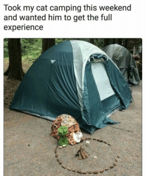 Memes, Experience, and 🤖: Took my cat camping this weekend  and wanted him to get the full  experience https://t.co/lWqiY8OLsw