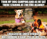 Fire, Giant, and Toys: TOOK MY DOG CAMPING AND AS HE SAT  THERE STARING AT THE FIRE BLANKLY  LREALIZED HE LOVES TICKS!  WAS BURNINGA GIANT PILE OF HIS TOYS