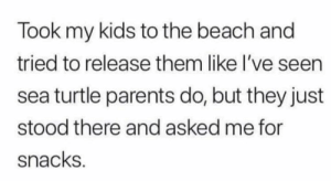 the beach: Took my kids to the beach and  tried to release them like I've seen  sea turtle parents do, but they just  stood there and asked me for  snacks.