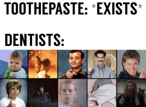 No, 9 10, and Exists: TOOTHEPASTE: *EXISTS  DENTISTS:  no 9/10