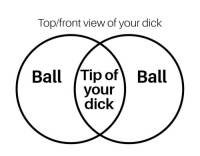 You top view of a dick assured, that