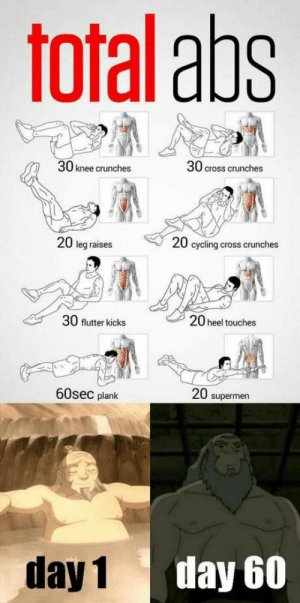 omg-humor:Works best if you're from the fire nation: Toral aps  30 knee crunches  30 cross crunches  20 leg raises  20 cycling cross crunches  30 flutter kicks  20 heel touches  60sec plank  20 supermen  day 1  day 60 omg-humor:Works best if you're from the fire nation