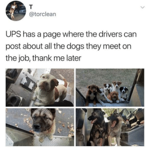 Nice doggos by awlgy MORE MEMES: @torclean  UPS has a page where the drivers can  post about all the dogs they meet on  the job, thank me later Nice doggos by awlgy MORE MEMES
