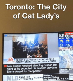 """Alex Trebek, Cats, and Jeopardy: Toronto: The City  of Cat Lady's  @TorontoCotRoscu  CPMon Ma  24 7:38:  MON TUE W  21 15  BURLINGTON  TASTE OF ITALY  AUG 24- 25-CA  y-  SECOND LARGEST CAT HOARDING  BREAKFAST  SITUATION IN THE CITY IN A MONTH  Alex Trebek received standing ovation last  night as he accepted his seventh Daytime  Emmy Award for """"Jeopardy!  dTosoD 9205-GARD  EURO EqUS)  NHL  SEF  Mariners  PM Starting Pitcher:  NY YANKEES  Félix Hernández (AL: 1-2 4.31) So many cats"""