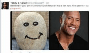 Your Childhood: Totaly a real girabenatapaah1 Sm  Remember your pet rock trom your childhood? his is him now Feel old yet?, via  picap com  : 2