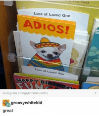 Memes, The Shadow, and Banished: Tour Child  Loss of Loved One  ADIOS!  Loss of Loved One  insta gram.com/p/f624SeumDE/  groovywhitektid  great sending this to mon as soon as I banish her to the shadow realm - Max textpost textposts