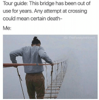 me too: Tour guide: This bridge has been out of  use for years. Any attempt at crossing  could mean certain death-  Me  The Funny Introvert me too