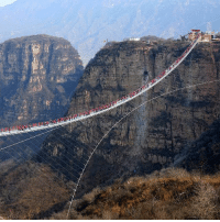 Tourists with a head for heights gather to walk on the world's longest glass bridge in China's Hebei province. The bridge, which stretches 488 meters, is 2 meters wide and hangs 218 meters (about 66 stories) above the valley floor between two steep cliffs. PHOTO: Imaginechina-REX-Shutterstock glassbridge bridge China headforheights: Tourists with a head for heights gather to walk on the world's longest glass bridge in China's Hebei province. The bridge, which stretches 488 meters, is 2 meters wide and hangs 218 meters (about 66 stories) above the valley floor between two steep cliffs. PHOTO: Imaginechina-REX-Shutterstock glassbridge bridge China headforheights