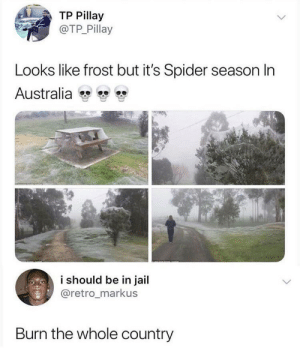 Nuke 100 via /r/memes http://bit.ly/2FvNSCF: TP Pillay  @TP Pillay  Looks like frost but it's Spider season In  Australia  i should be in jail  @retro_markus  Burn the whole country Nuke 100 via /r/memes http://bit.ly/2FvNSCF