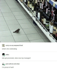 Butt, Good, and Http: tR  ERMA  carry-on-my-wayward-butt  what's she celebrating  baku  she got promoted, shes now top manager!  just-call-me-red-chan  I'm proud of herl! Good job, birb! ;) via /r/wholesomememes http://bit.ly/2GVxw9j