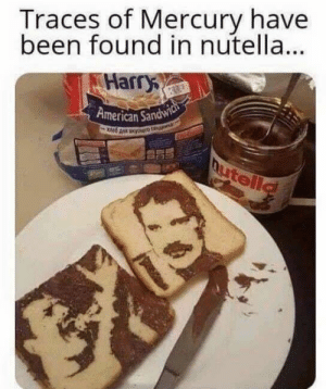 43 Funny Memes That Are Insanely Dank: Traces of Mercury have  been found in nutella..  Harry  American Sandw 43 Funny Memes That Are Insanely Dank