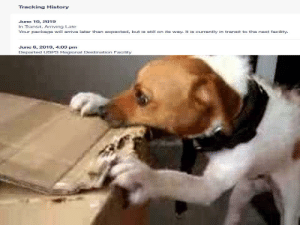 Funny, Work, and History: Tracking History  June 10, 2019  In Transit, Arriving Late  Your package will arrive later than expected, but is still on its way. It is currently in transit to the next facility.  June 6, 2019, 4:03 pm  Departed USPS Regional Destination Facility Bring Your Dog To Work Day At USPS