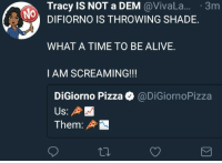 <p>Extra Cheese with Profits Please (via /r/BlackPeopleTwitter)</p>: Tracy IS NOT a DEM @VivaL.. 3m  NO  DIFIORNO IS THROWING SHADE.  WHAT A TIME TO BE ALIVE.  I AM SCREAMING!!!  DiGiorno Pizza @DiGiornoPizza  Them: <p>Extra Cheese with Profits Please (via /r/BlackPeopleTwitter)</p>