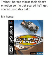 Horses, Stephen, and Horse: Trainer: horses mirror their rider's  emotion so if u get scared he'll get  scared. just stay calm  Mv horse:  皐  STEPHEN HAWKING'S  PRO WHEELEHAR https://t.co/kEvqIldjnK
