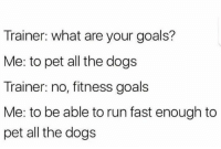 Run Fast: Trainer: what are your goals?  Me: to pet all the dogs  Trainer: no, fitness goals  Me: to be able to run fast enough to  pet all the dogs