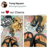 "Af, Ass, and Bad: Trang Nguyern  @trangnnguyenn  we our Chacos  @DrSmashlove So I'm on the stairmaster tryina knock out this 103 steps per minute for 45 min right and I get to minute 38 and I'm cot damn feeling like I won't make it. My lungs are now coughing to try to draw air inside my body is like ""MF WE WILL GO ON STRIKE U CAN ONLY PUT US THRU SO MUCH WE HAVE APPROVAL AT THE HIGHEST LEVEL OF LOCAL 183 ELECTRICIANS BROTHERHOOD TO SHUT YO ASS DOWN BELEE DAT SHIT."" But nah I kept going bc I AIN NO BISH (also, I'm stupid 🤗). So the pretty lil woman next to me say ""sir.........are you ok(?)"" And I wanted to be like ""BISH DON'T U SEE MY SPEED RN? I AIN'T DOING 65 STEPS PER MINUTE LIKE U WHICH IS A RESPECTABLE SPEED FOR KICKING YOUR LEGS OUT BEHIND U TO BUILD THAT UNDERBUTT-CREASE BC U TRYING TO GET A ASS THE NATURAL WAY AND NOT THE KARDASHIAN POOPY DIAPER SURGERY WAY BUT THIS SHIT LIKE SPRINTING UP A MOUNTAIN COT DAMMIT YES I'M OK LET A BROTHER BREAVE 😤."" But I didn't say that. I didn't say that shit at all 😂. I said ""ayeeee you don't have to call me sir! I'm not THAT old. I only have six grandkids ... THAT I KNOW ABOUT LOL LEMME STOP LYING I AIN OLD ENUF TO BE A GRANDPA HAHAHAHA I'M STUPID WYD THO."" And she immeejally reply ""ha! You got me beat. My first grand kid was just born so I have a while before I catch up!"" Hold the damn phone bruh. She was pretty AF too. Like the math ain een make no damn sense. She 30? What did she do, have a daughter at age 15 and then THAT daughter had a baby at age 15? Or maybe she 45? Like she Lululemon down - and where she get the money for all this? And then I pictured her meeting a sweet old glucose guardian who was like ""I don't mind that you have kids - I never wanted them - but I'll treat yours like mine ☺️"" and took care of her and now she living good AND THEN I REALIZED MAYBE SHE GOT HER OWN DAMN MONEY WHY SHE GOTTA BE A KEPT WOMAN MAYBE SHE INDEPENDENT AF SHAME ON ME SMASH FOR ASSUMING SHIT. Then I said ""LOL NO WAY YOU'RE GORGEOUS! 😬"" That's all I said. And then she said ""aw bless your heart you're cute LOL."" That was it. If u think I'm not gonna share my nonsensical stories with y'all YALL ARE WRONG I SHARE THE GOOD THE BAD AND THE MEANINGLESS BLESS UP 😂😂😂"